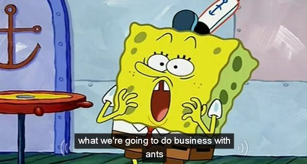 Sponge Bob Caption