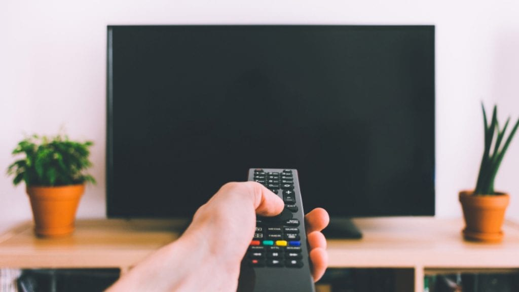 person pointing remote at a television between two potted plants