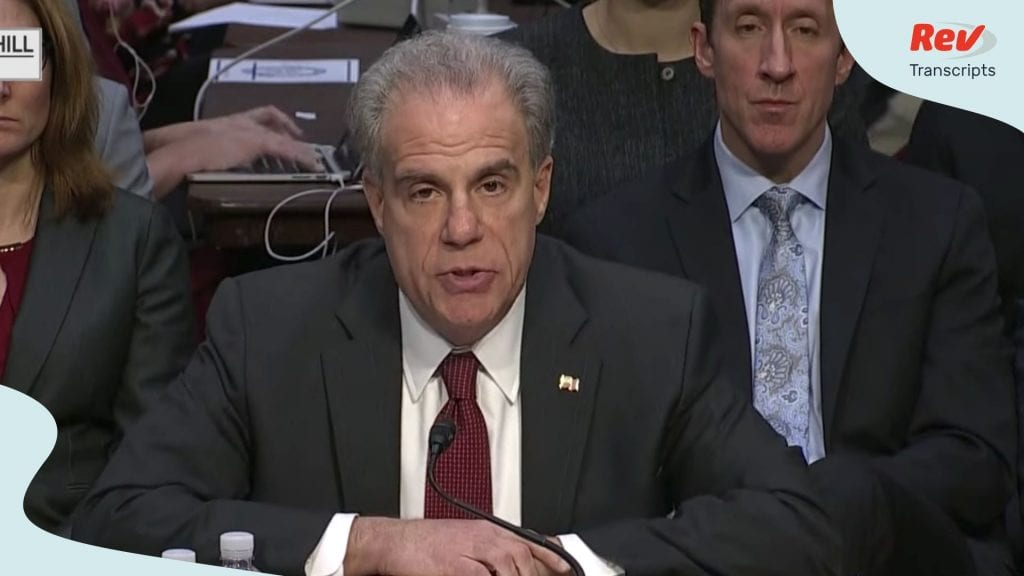 Inspector General Report Hearing Transcript