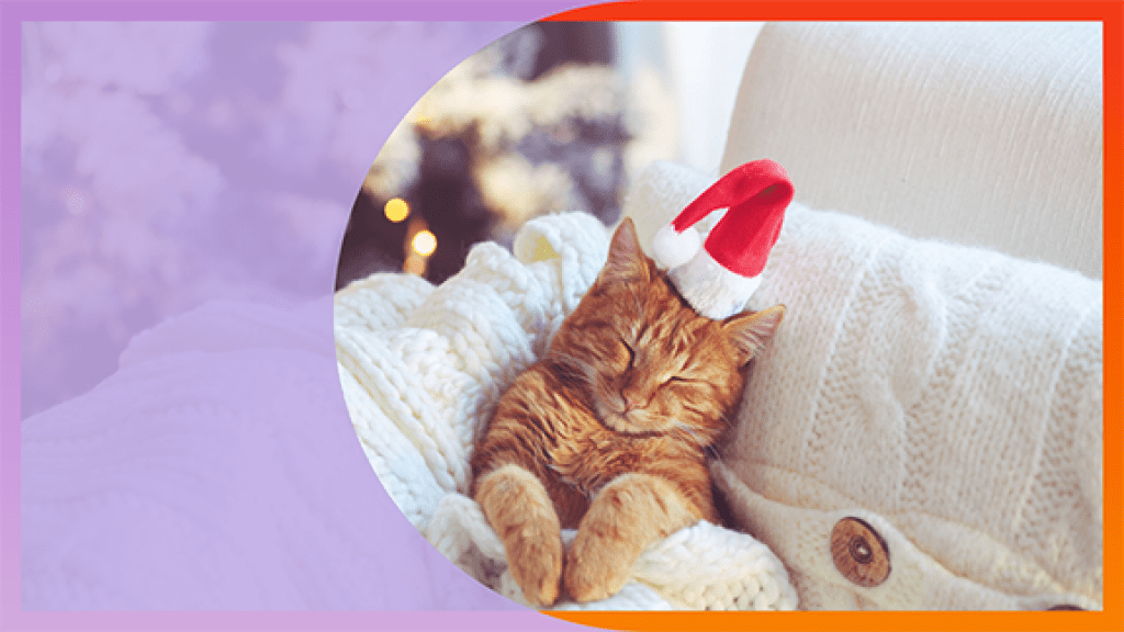 11 Words To Help You Beat Holiday Stress and Chill