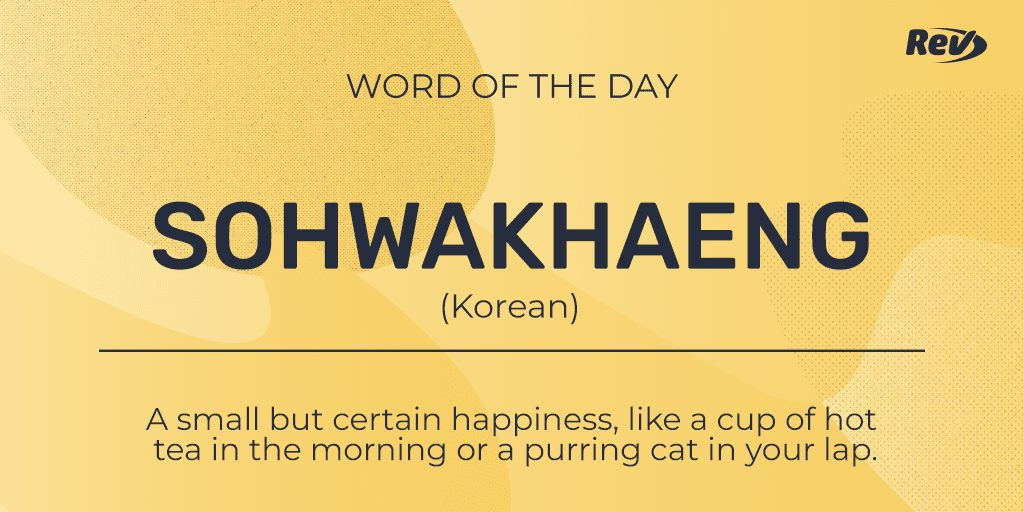 SOHWAKHAENG (Korean): A small but certain happiness, like a cup of hot tea in the morning or a purring cat in your lap.